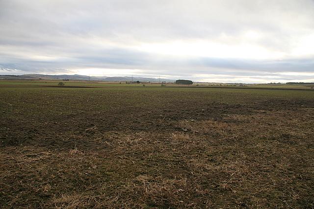 Farmland near Forfar