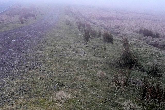 Old road to Llywel