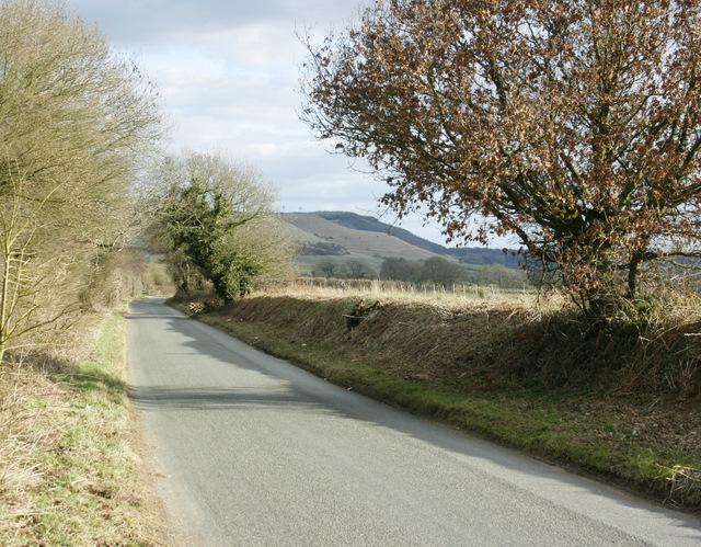 2009 : Along the lane to Heddington