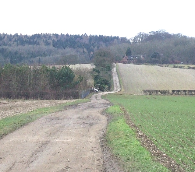 Hog Hall Lane and field boundary