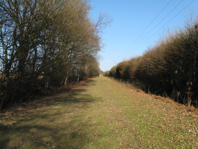 Footpath to Halland Park Farm