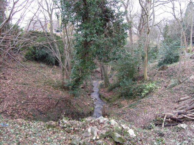 Lilley Brook tributary stream