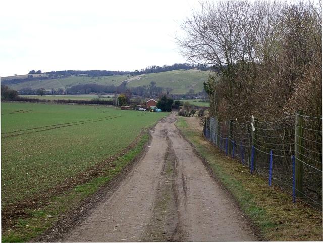Hog Hall Lane leading to Hog Hall Cottages