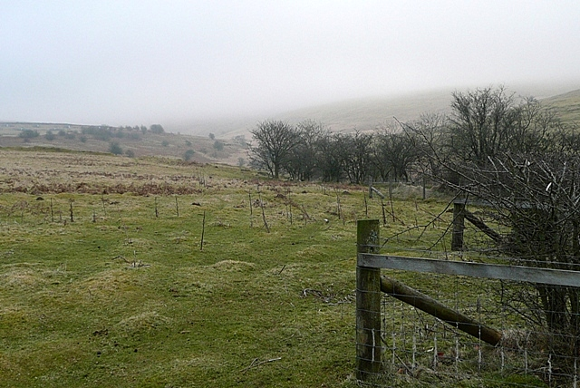 Near Gwibedog
