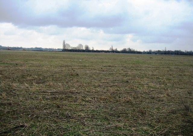 Farmland stubble