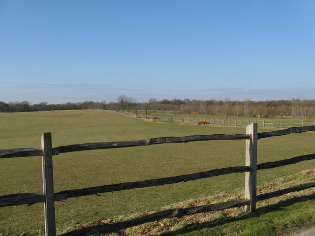 View north to Bentley Wood