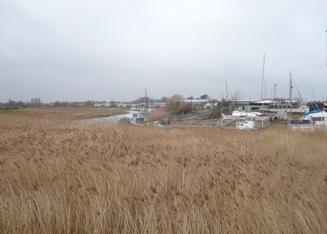 Reed beds and Sandwich Marina viewed from the Stour Valley Walk