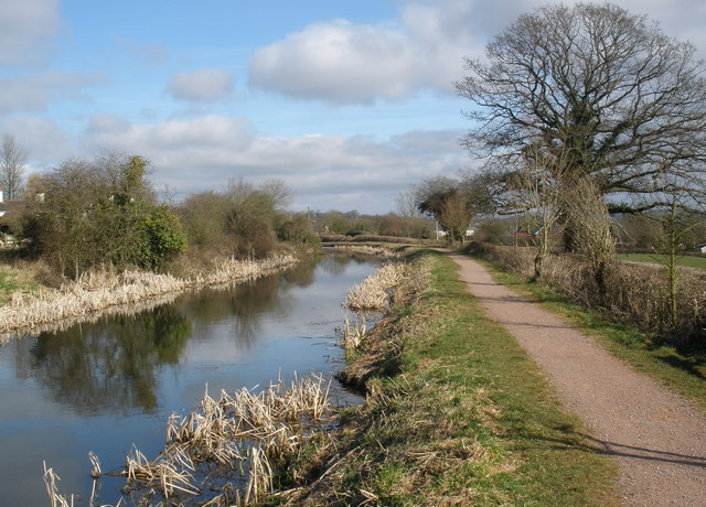 Towpath, on the Grand Western Canal