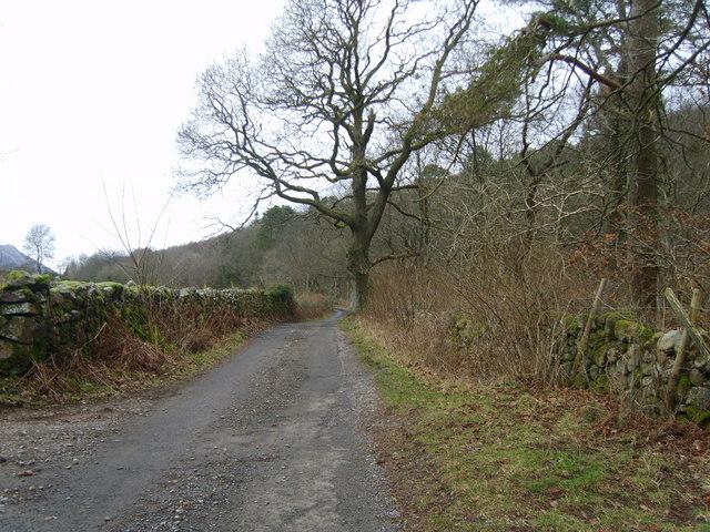 Road in Miterdale