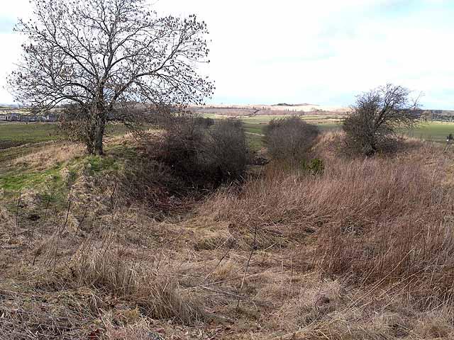 Old railway cutting at Barrasford