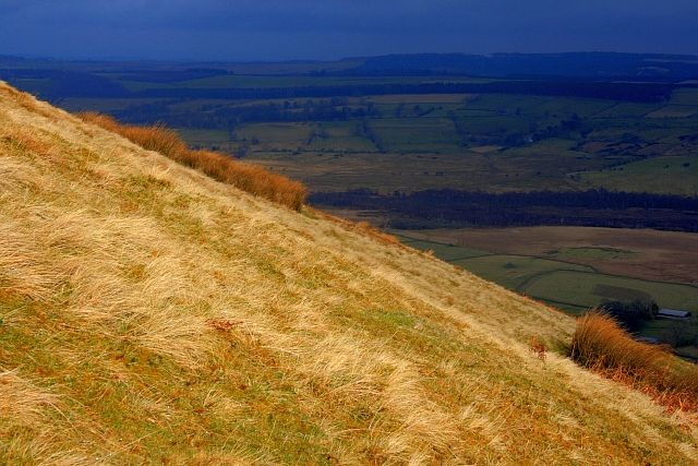 On the Slope of Souther Fell