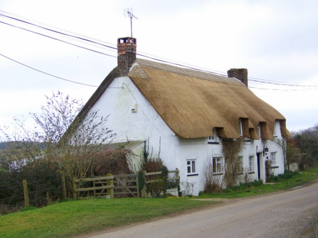River Cottage, Affpuddle