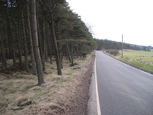 Road beside Beecraigs Wood