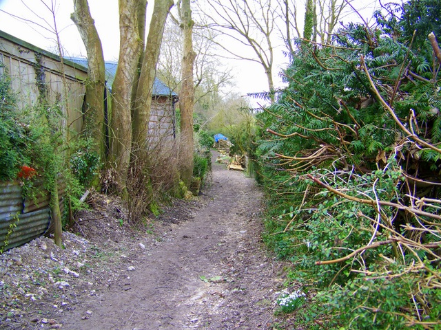 Footpath, Mount Sorrel