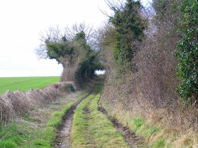 Bridleway, Martin Drove End