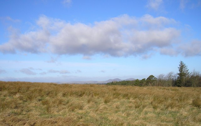 Lanton Moor with the distant Eildon Hills