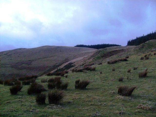 Foel-yr-hydd summit from south ridge