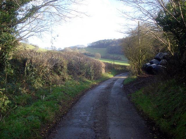 Lane at Lower Lye