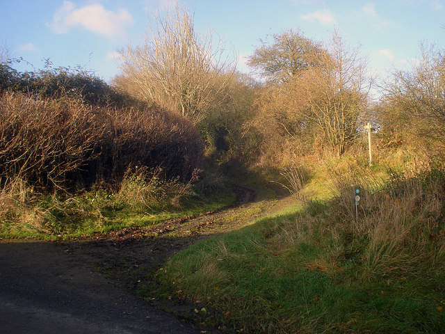 Entrance to a farm track at Lower Lye