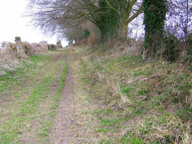 Bridleway to Toyd Down