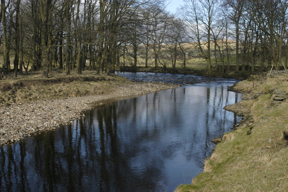River Ribble near Crooks