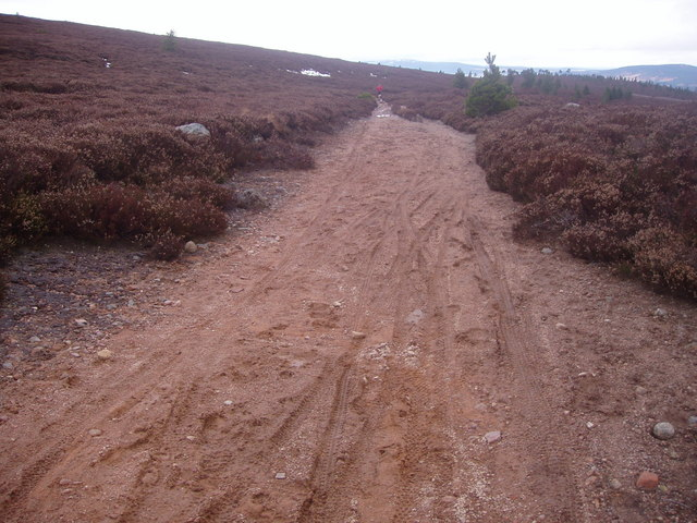 Track on Bawdy Meg