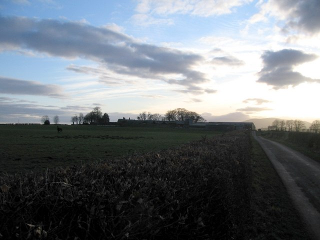 Approaching Longbridgemuir