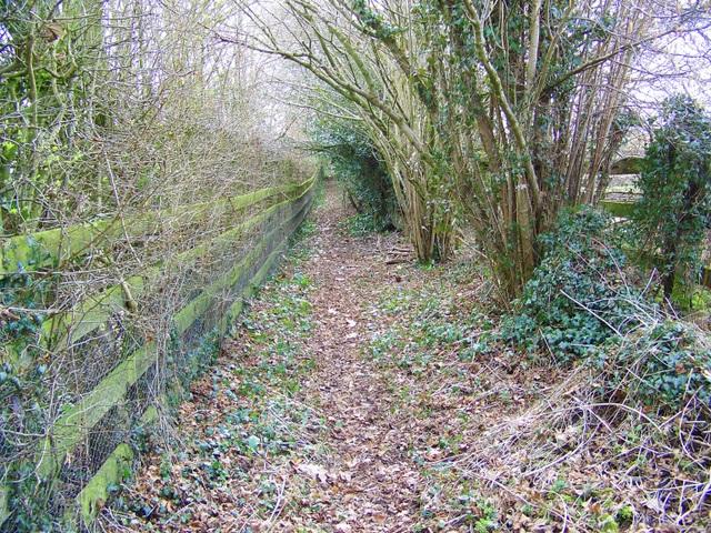 Footpath near Martin Drove End