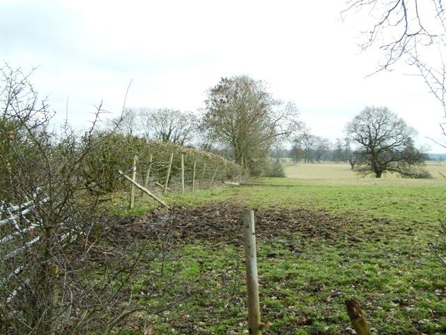 Farmland near Norton Forge