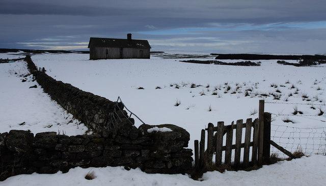 Hut & dyke, Colaboll, Loch Shin.