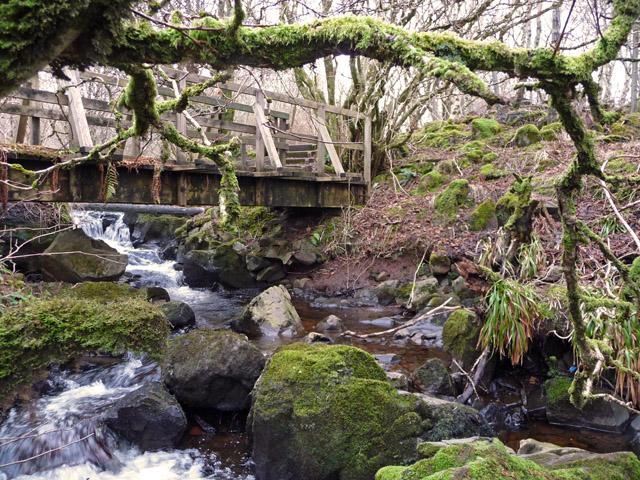 Footbridge behind Skye Wool Mill