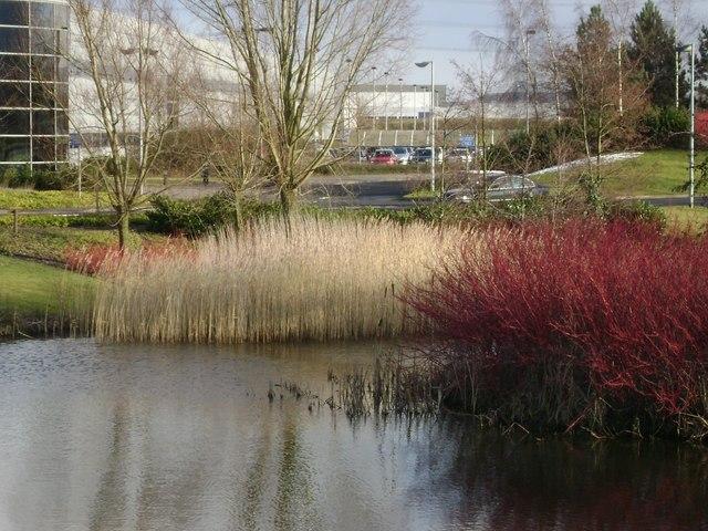 Landscaping, BMW engine plant, Hams Hall