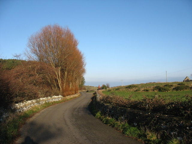 Bend in the road by Coed Wylfa woodland