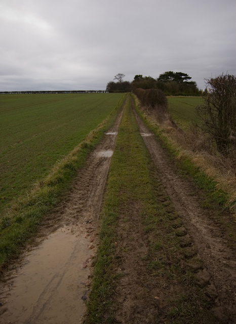 Footpath near Middleton on the Wolds