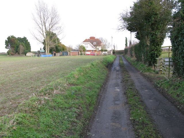 Lane leading from Little Knell Farm