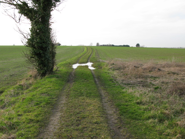 Looking W along footpath from Knell Lane