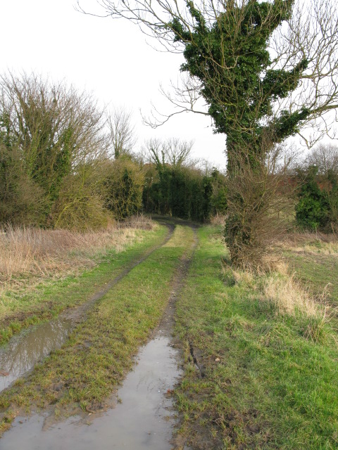 Looking E along footpath to Knell Lane