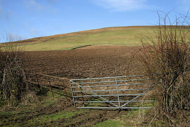 Farmland gates