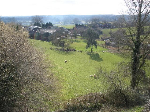 Shuteslade Farm