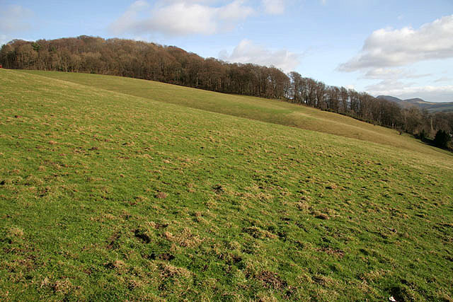 Farmland on Blaikie's Hill