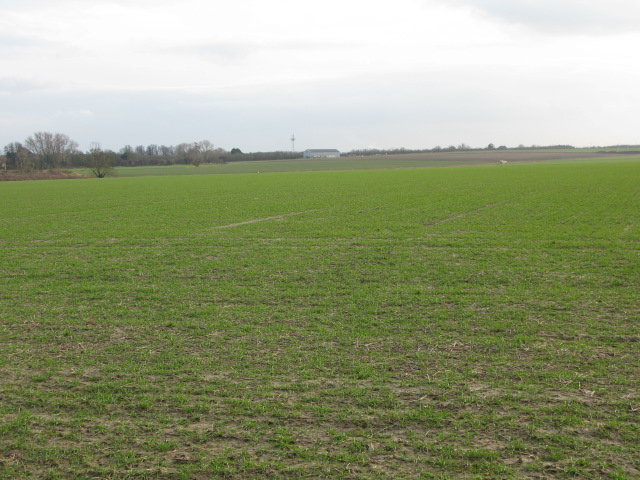 View across farmland towards the A257
