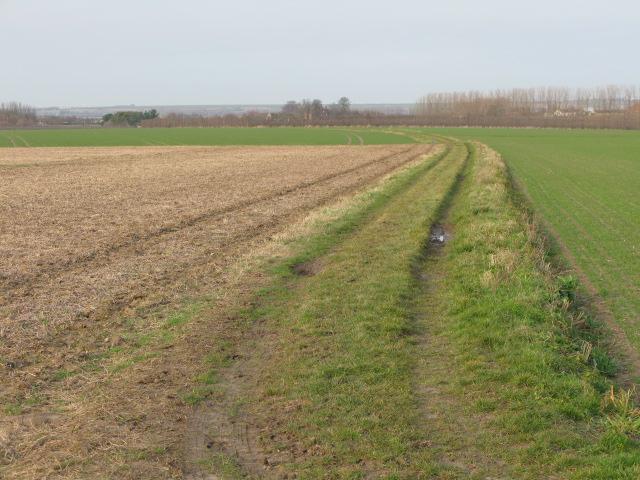 Bridleway towards Ware