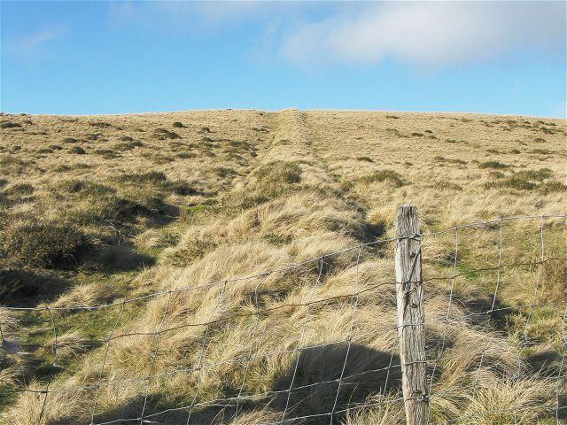 Former field boundary on Pegwn Bach