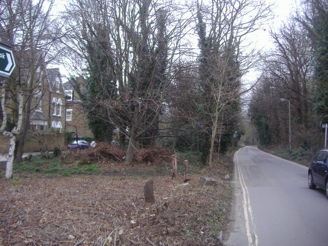 Vine Road, Barnes