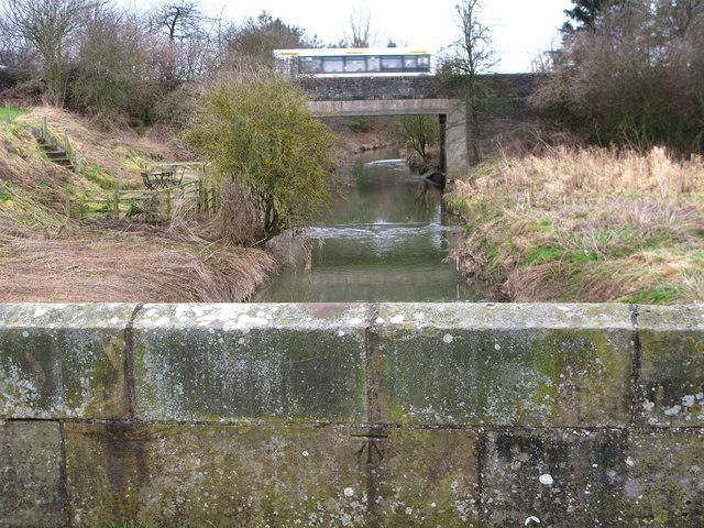 Viewly Bridge