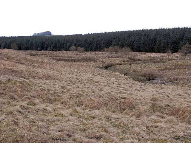 Valley of the Dry Burn