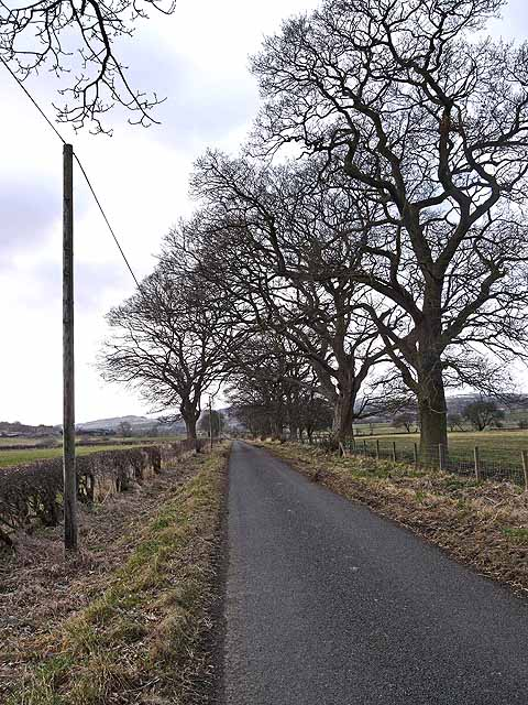 Country road between Keepwick Farm and Cocklaw