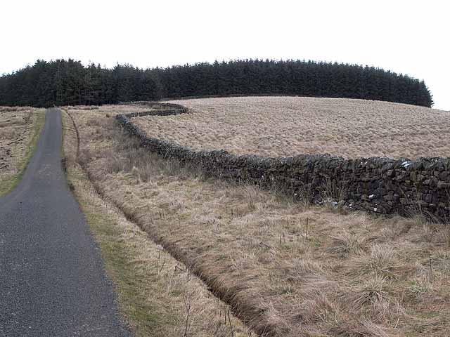 Country road and bendy wall