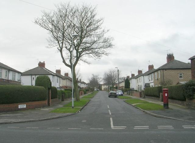 Swinnow Avenue - Swinnow Lane