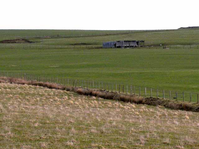 Fields and shed near Plashetts Farm